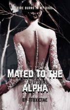 Mated to the Alpha  by ttoxicmin