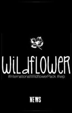 IWP NEWS by Inter_WildflowerPack