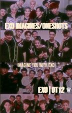 EXO Oneshots/Imagines|| EXO by Ella_264