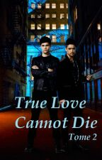 True Love Cannot Die Tome 2 by KimDussault