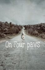 on four paws by JaniFrstl