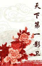 Thiên Hạ Đệ Nhất Ảnh Vệ   by kanoOrochi
