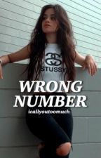 Wrong Number ▪ Camila/You by AngelFox0130