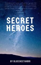 Secret Heros by BlueCheetahBri