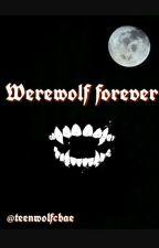 Werewolf forever // Teen Wolf by mexssane