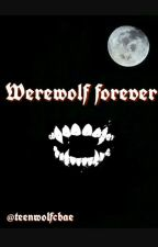 Werewolf forever // Teen Wolf by teenwolfcbae