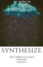 SYNTHESIZE by Wulandpa
