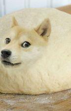Doggos by LuckyHippo