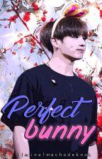 Perfect Bunny [Jikook] [Traducida] by JiminElMachoDeKook