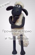 """""""Дневник Барана Барашкина"""" by KristiDON"""