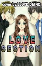 Love Section by LloydDiano