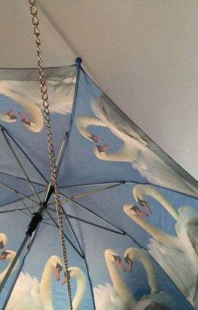 MILK AND HONEY ( k. bakugou ) ✔ by t-helosersclub