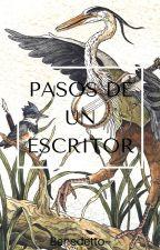 Pasos de un escritor by Benedetto36