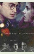 HARRY Y HERMIONE by HarmonyPotterGranger