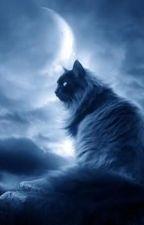 Warrior Cats - Der 6. Clan (Warrior Cats x httyD) by Wildfire263