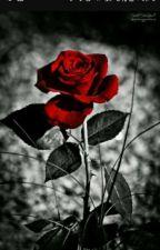 30 Rosas(jimin y tu) by Nalgas_yoonmin