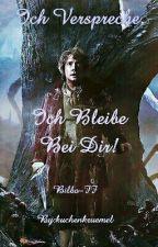 Ich Verspreche, Ich Bleibe Bei Dir! (Bilbo-FF) (Pausiert!) by kuchenkruemel