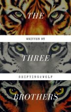 Three Brothers by Shifting2wolf