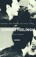 eunhae feeling's   مـشاعر الايونهاي by shell_ravi