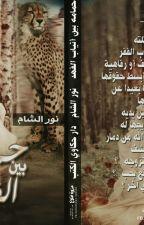 حمامة بين أنياب الفهد by Noor_el_sham