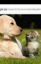 Mi familia, ¿animales? by Grerika