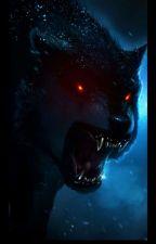 Little Wolf by Captain5Capri