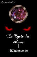 Le Cycle des Âmes ~tome 1~ by amelimilou