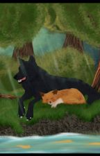 Adopted by The Alpha of the shadow pack.  by Slytherin_is_bae