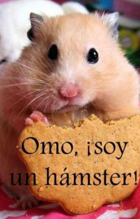 Omo, ¡soy un hámster! (infinite) (Hoya) (kpop) by PaquitoMindjav
