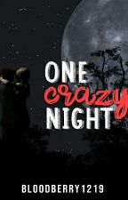 One Crazy Night by BloodBerry1219