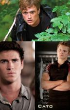 Hunger Games Preferences by mangomoth_5