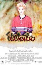 WEIBO [LUHAN FANFIC] by larraeiou