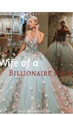 wife of a billionaire heir  by salmerh1497
