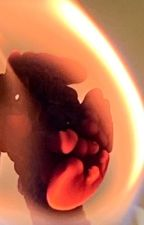The unknown Gibbs daughter by DiamondTricks01