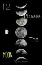 12 Phases of The Moon by xsueylux