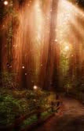 Leśne sekrety.. by storczykk