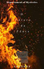 Department of mysteries - O Futuro da Fênix [ Universe. Livro 1]  by crushHP