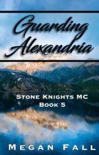 Guarding Alexandria ✔️ (#5~Stone Knight's MC) | SAMPLE by Meganfall