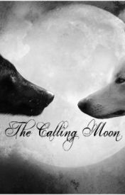 The Calling Moon by BookFrenzy123