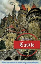 Castle by beestinson