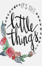 Little Things (Complete) by merylfan2