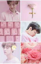 [Hunhan][Chuyểnver] Hiểu tinh cô tự by ananmerino
