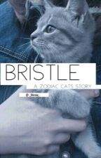 Bristle|zodiac cats| on pause  by -_libraaa_-
