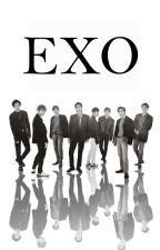 E. X. O. [EXO Profiles] by ItsMeRhiannieee
