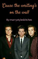 'Cause the writing's on the wall -Larry Stylinson- by marrystylesbitches