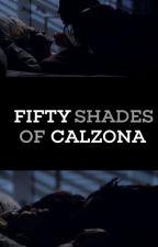 Fifty Shades Of Calzona (Adaptada) by sararamirezart