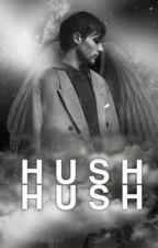 Hush,Hush. -l.s by conchetumadrelouis