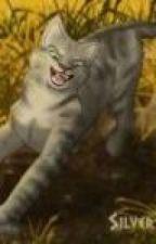 Warrior cat RP by warriorcatrule