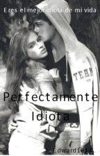 Dream catcher  «Perfectamente Idiota»                               by edward1614