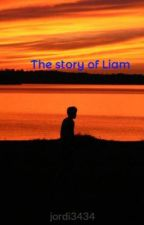 The story of Liam by darrenlevine